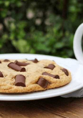 A large single-serving vegan chocolate chip cookie on a plate
